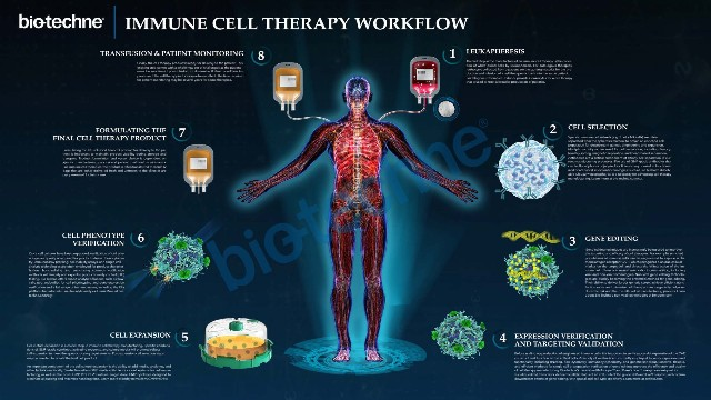 细胞免疫治疗Biomarker检测的整体解决方案