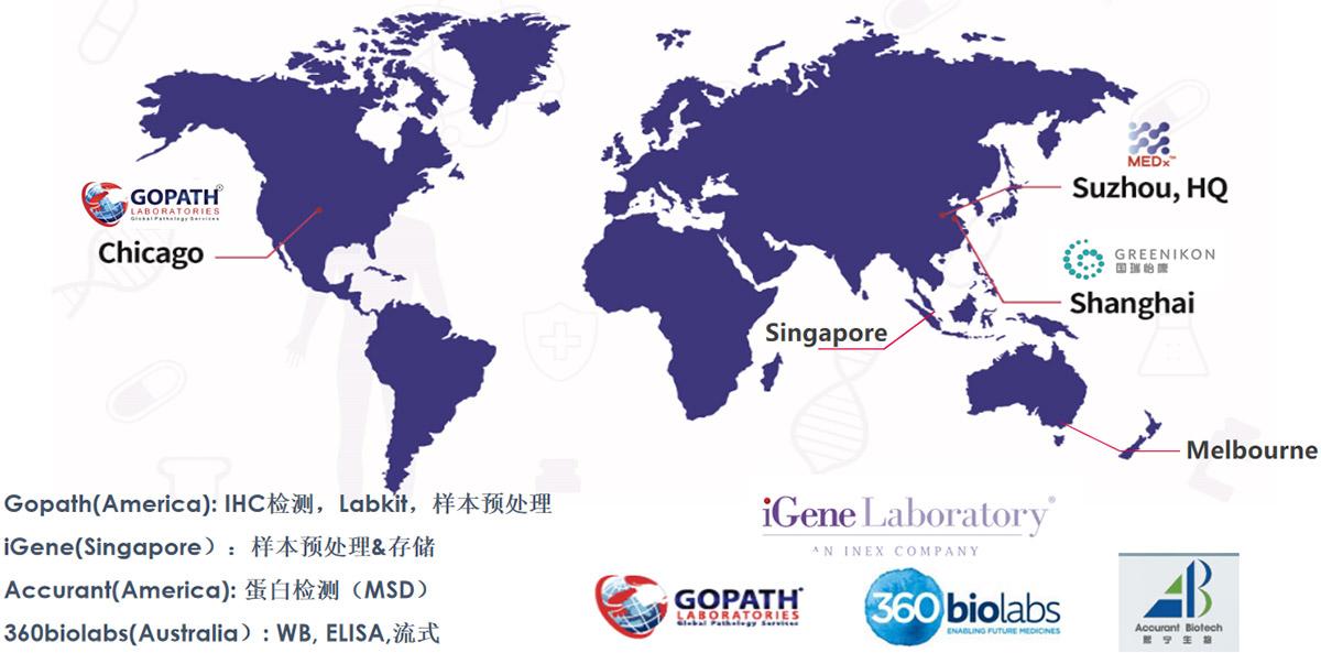 迈杰转化医学与全球中心实验室及CRO的战略合作
