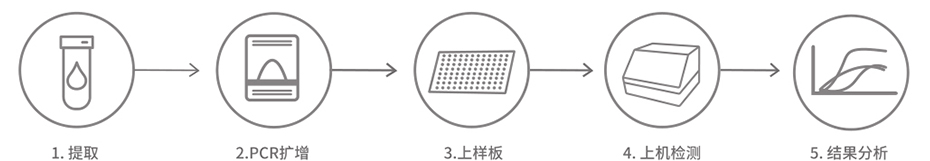 人微卫星不稳定性MSI检测试剂盒