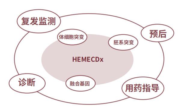 血液肿瘤基因突变检测产品
